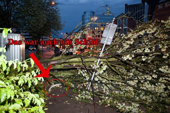 Baum blockiert Gehweg in Wuppertal