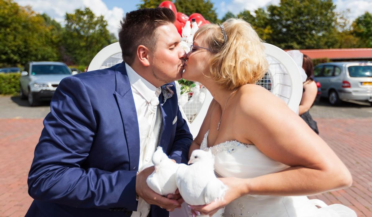weisse Tauben für Hochzeitsfotos